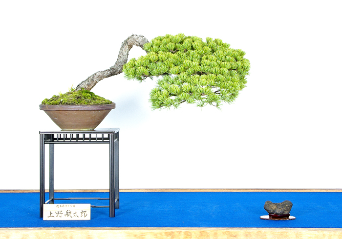 上野 航太郎