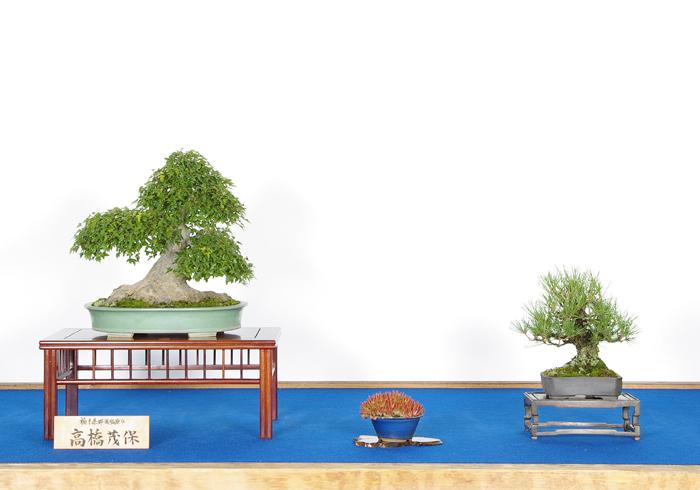 教室展示板设计图展示