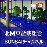 北関東盆栽組合Youtube