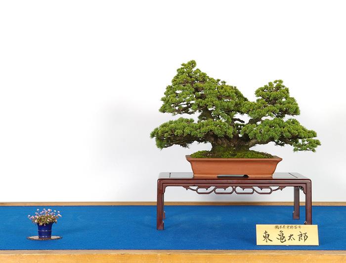東 亀太郎