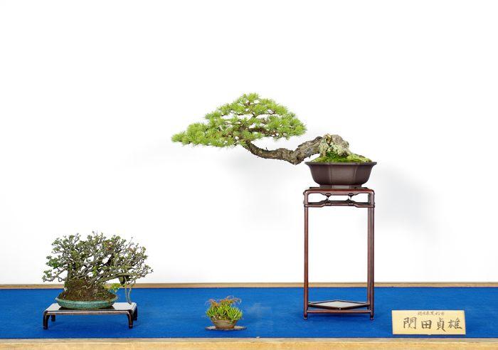 関田 貞雄