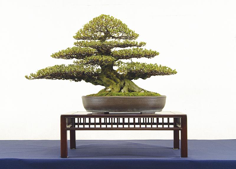 渡辺 喜一郎